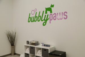 Bubbly Paws5
